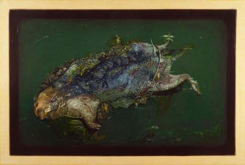Biological Regionalism: Dead Muskrat, under Niagara Street, Scajaquada Creek, Buffalo, New York, USA
