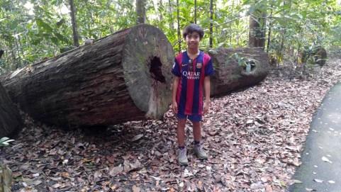 20160501_075239 Our Trek at Bukit Timah Hill
