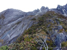 20170314_074033 Expedition to Mount Kinabalu