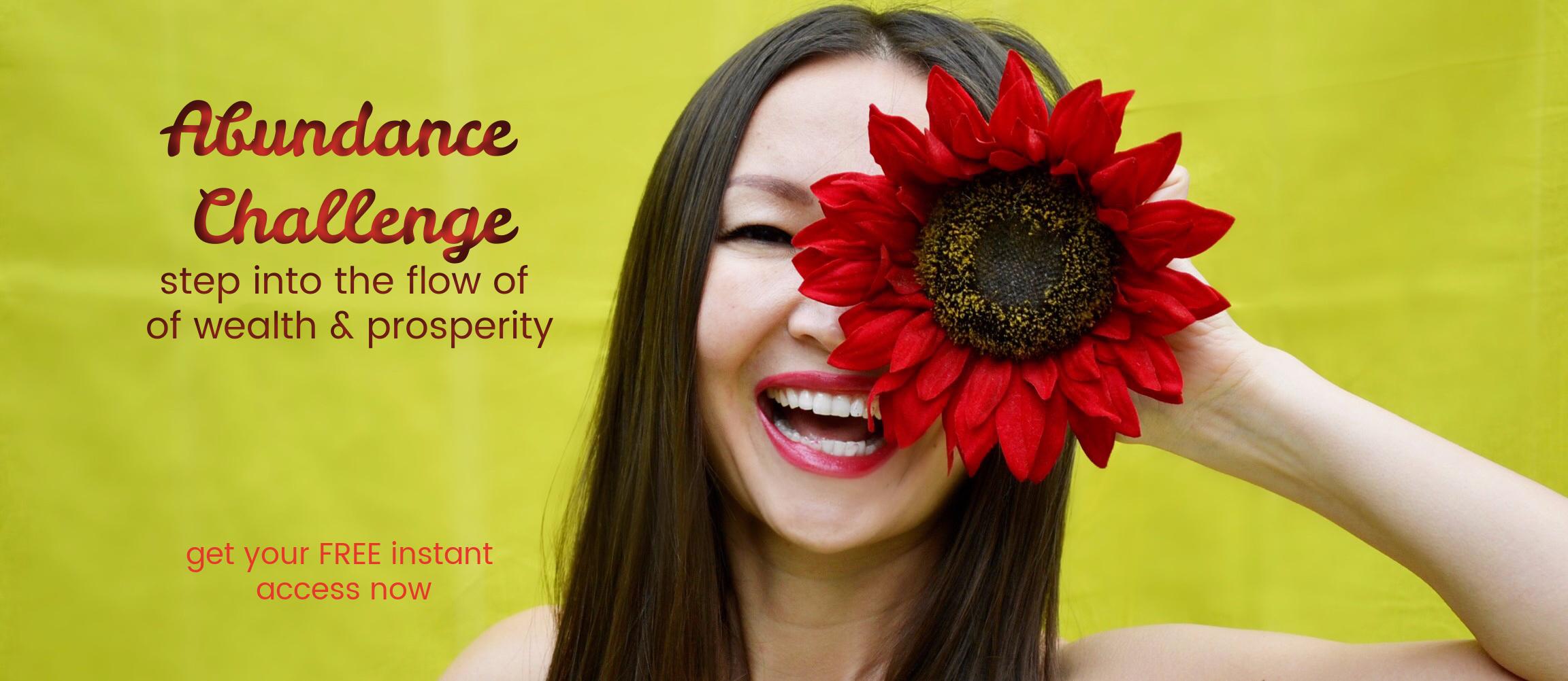 Abundance Challenge Access