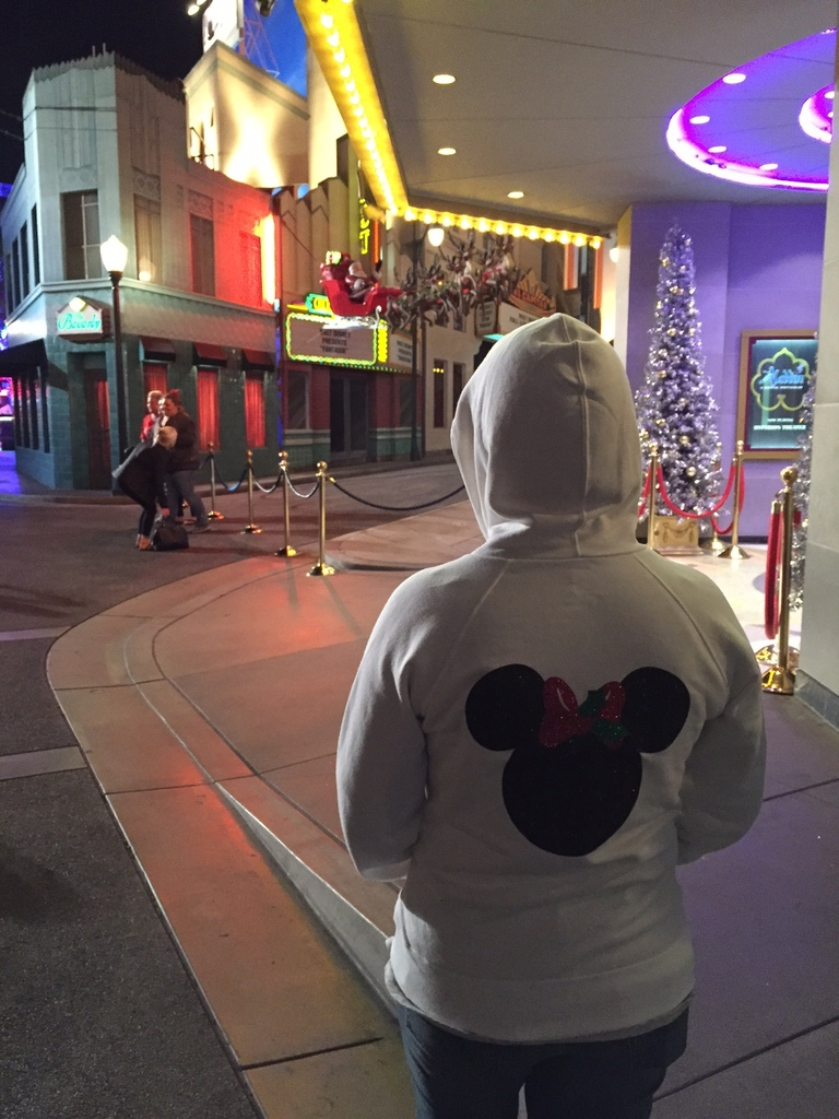 Hoodie in California Adventure