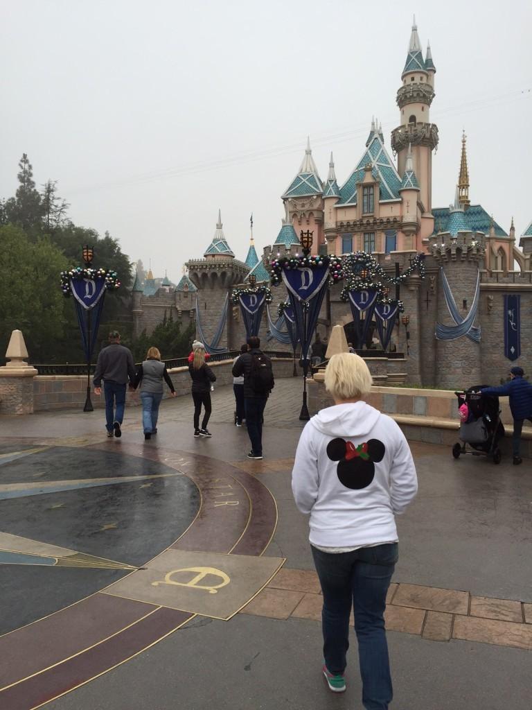 Hoodie at the Disneyland Castle