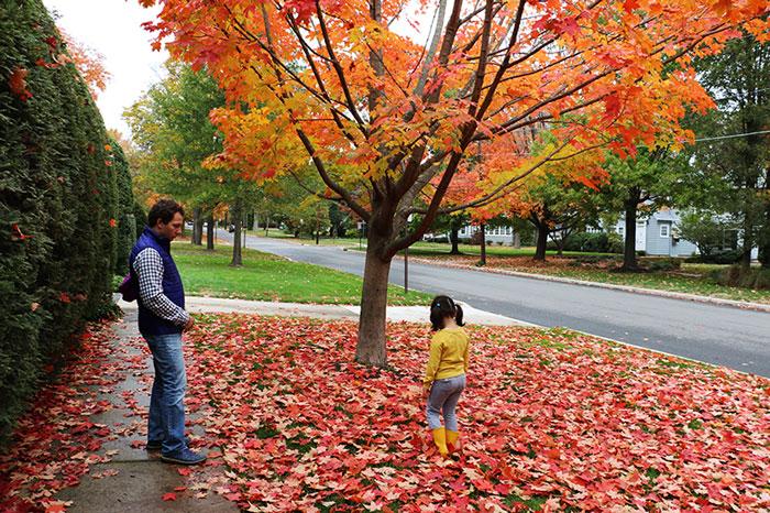 fall15-11