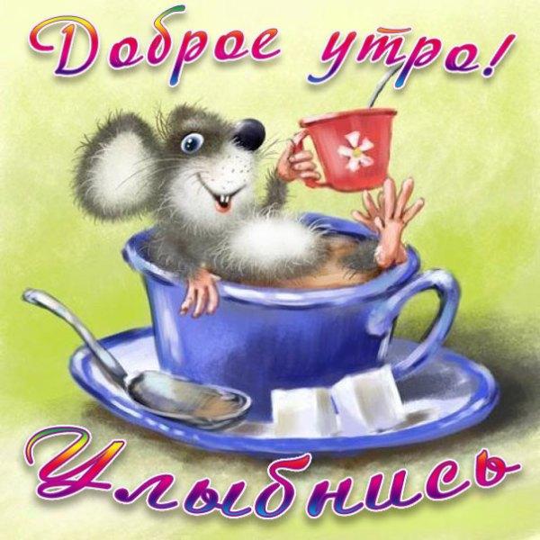 Прикольные открытки с добрым Утром Пожелание хорошего ...