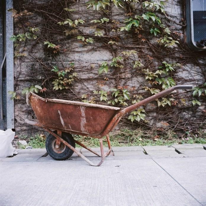 Mind if I barrow this? - Kodak Portra 400 shot at ISO400.