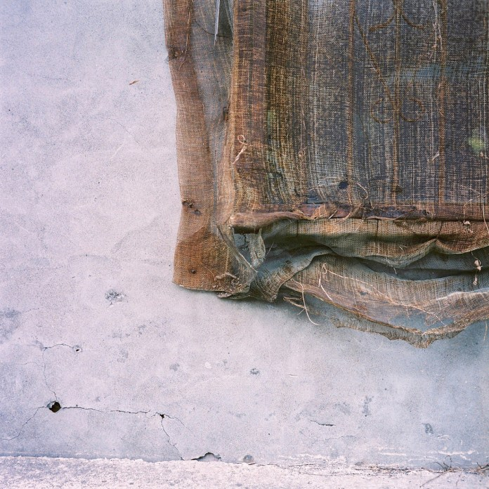 Meshed up - 2015-05-02 - Kodak Portra 400VC shot at EI 320. Color negative film in 120 format shot as 6x6.