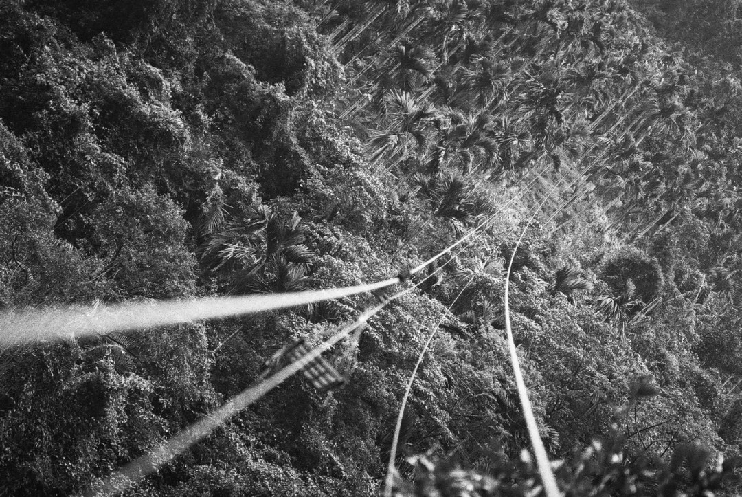 Beetlenut zipline - Shot on Ilford Delta 400 Professional at EI 800. Black and white film in 35mm format. Push processed one stop.