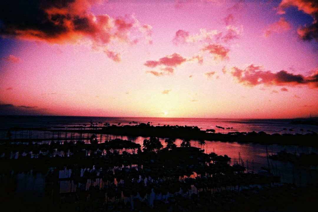 Purple haze - Shot on Lomography XPro 200 at EI 200. Color reversal (slide) film in 35mm format. Expired and cross processed.