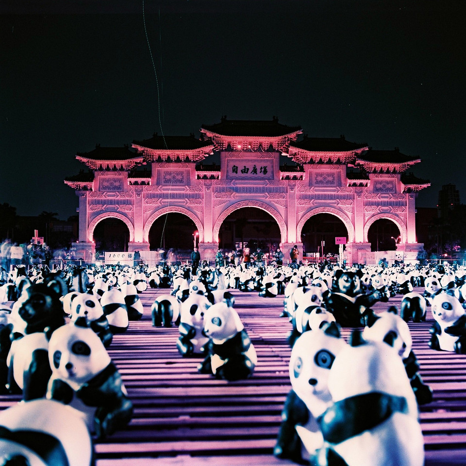 Panda party! - Lomochrome Purple XR 100-400 shot at EI 400. Color negative film in 120 format shot as 6x6.