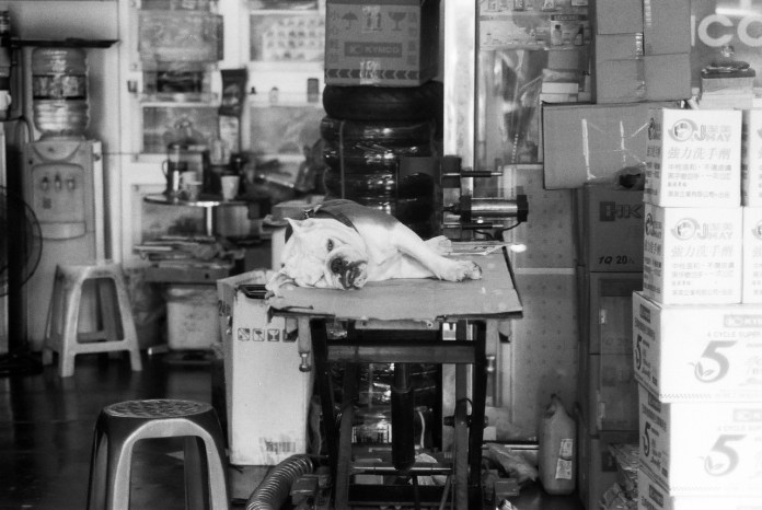 That Monday feeling - Shot on ILFORD SFX 200 at EI200. Black and white negative in 35mm format.