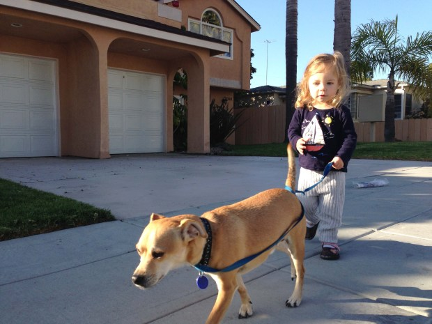 Walking Domingo!