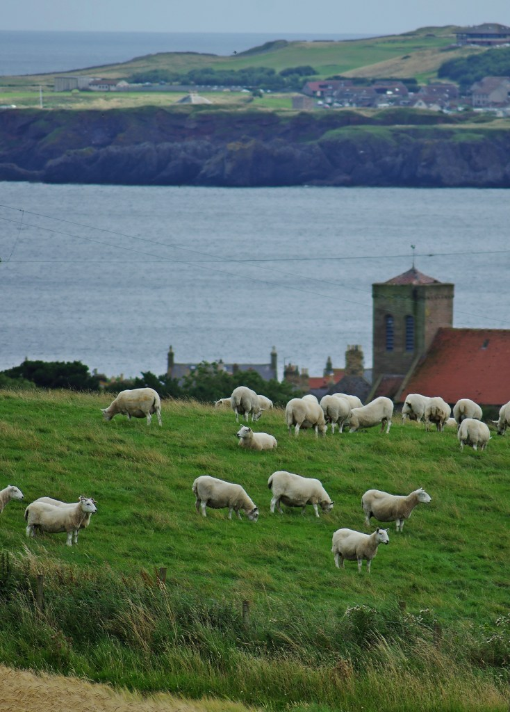 st abbs church