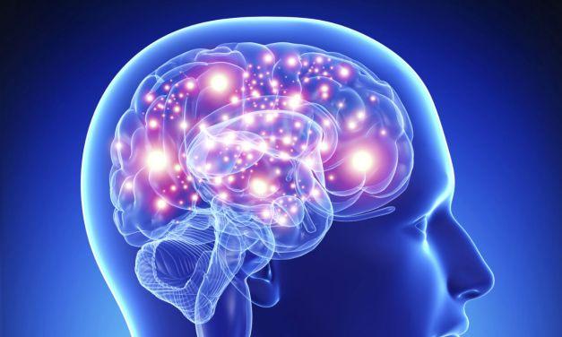 Développez la puissance de votre cerveau