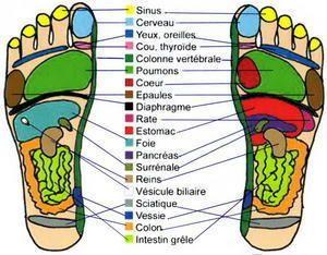 carte pied