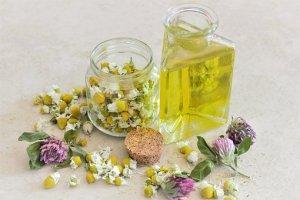5 plantes utiles contre les maladies de l'hiver