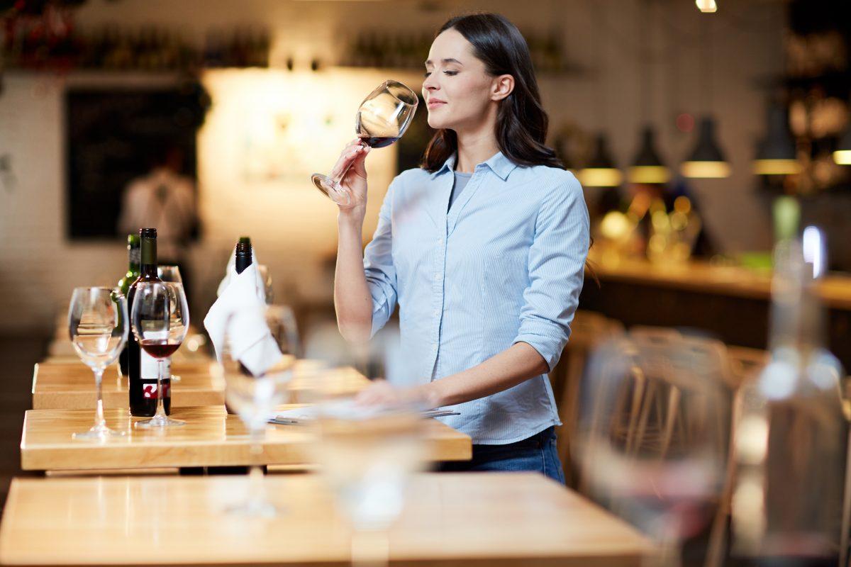 Ruta del vino del Bajo Aragón