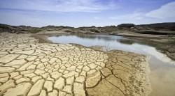 Hay sequía en el 84.9% del territorio: Servicio Meteorológico Nacional
