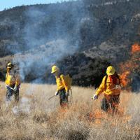 Conafor conmemora el Día Nacional del Combatiente de Incendios Forestales