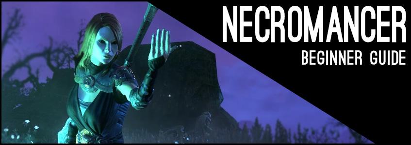 Magicka Necromancer Beginner Guide