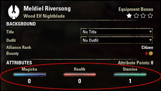 Stamina Nightblade Beginner Guide Attributes