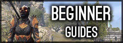 beginner guide banner frontpage