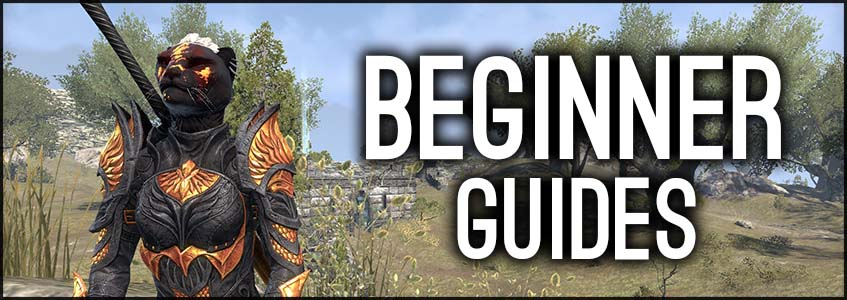 beginner guides banner article