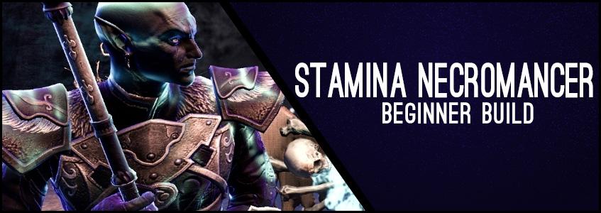 Stamina Necromancer Beginner Build Header
