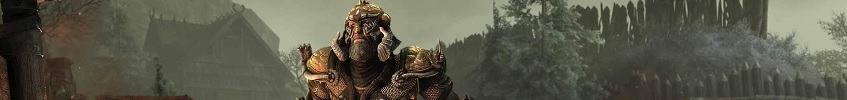 Kynes Aegis banner picture red damage mitigation eso
