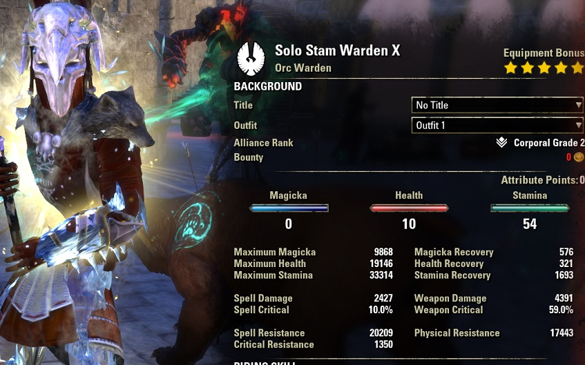 Solo Stamina Warden build pve buffed stats ESO