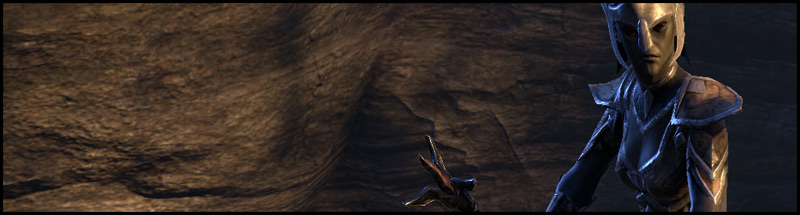 Shepherd Neloren Darkshade Caverns 1 Dungeon