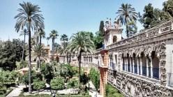 Palmeras en el Alcázar de Sevilla