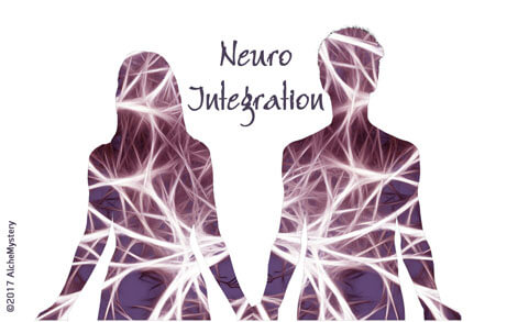 Neuro Integration