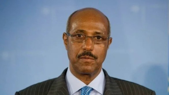 Image result for Seyoum Mesfin