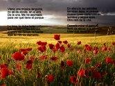 Paisajes-Hermosos-Fotos-maravillosas