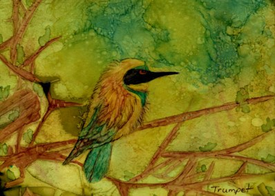 BirdonLimb