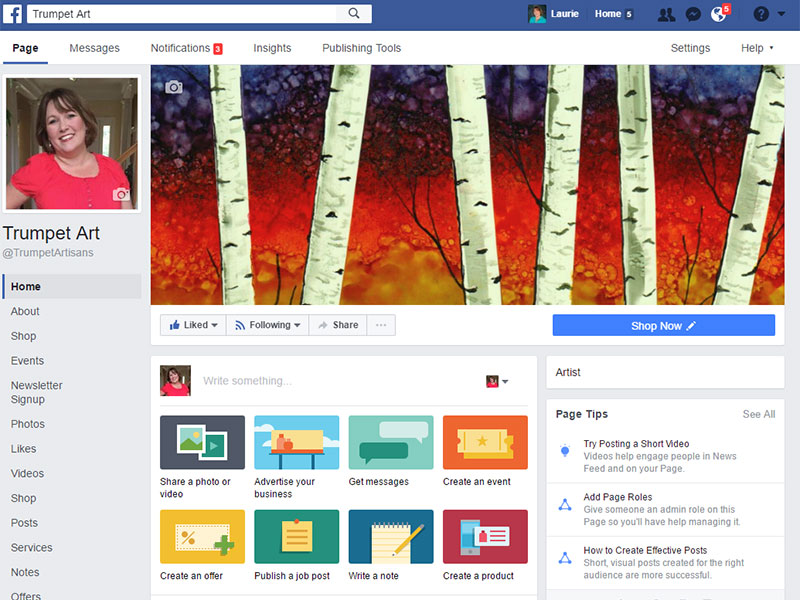 Art Marketing Tip: Share Your Artist Facebook Page Publicly on Your Personal Profile Bio