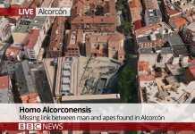 Aparecen los restos del Homo Alcorconensis, origen de la especie humana.
