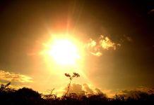 Alcorcón en alerta naranja por altas temperaturas