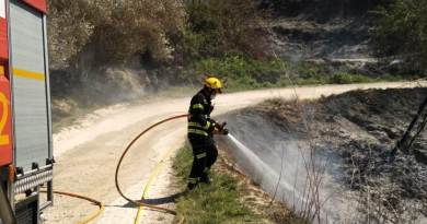 forest fire-cocentaina-