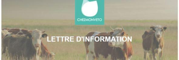 COVID 19 – Continuité des services Chezmonveto