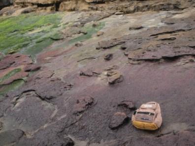 Huellas de dinosaurio en Tereñes