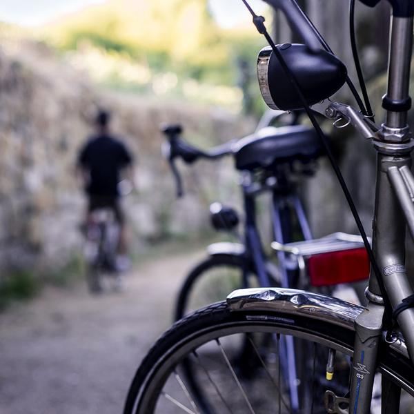 actividades bicicletas