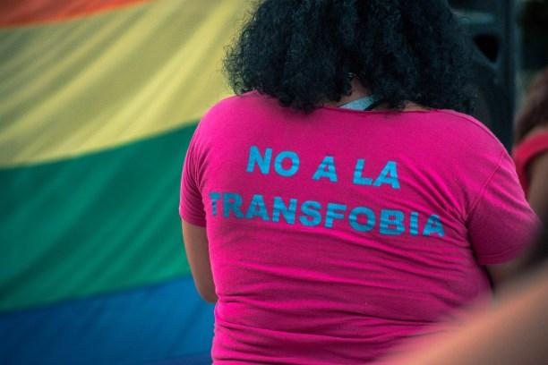 Día de la promoción de los derechos de las personas trans. Autor: TitiNicola, 18/03/2019. Fuente: Wikimedia Commons (CC BY-SA 4.0.) TERF