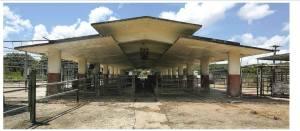 Antigua Vaquería en la Subestación Experimental de Gurabo, diseñada por el arquitecto Henry Klumb.