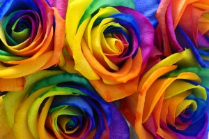 Florista podría responder por negarse a vender flores a pareja ga