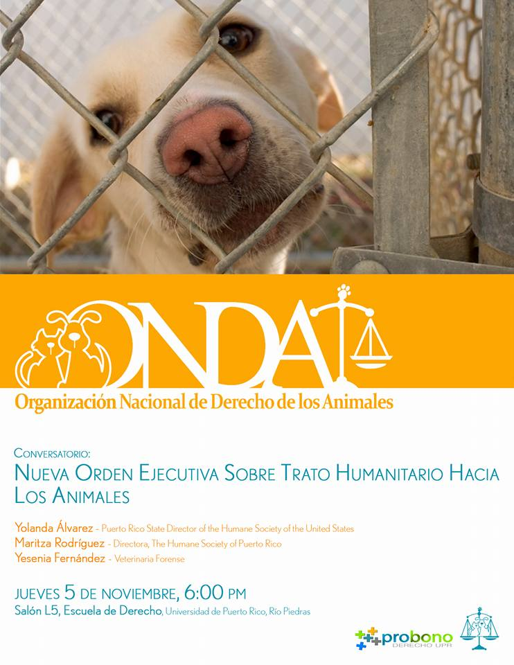 Conversatorio sobre nueva política pública de protección de animales