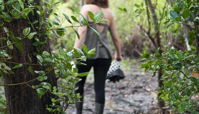 Anuncian internado enfocado en derechos humanos y conservación ambiental - Foto MPA