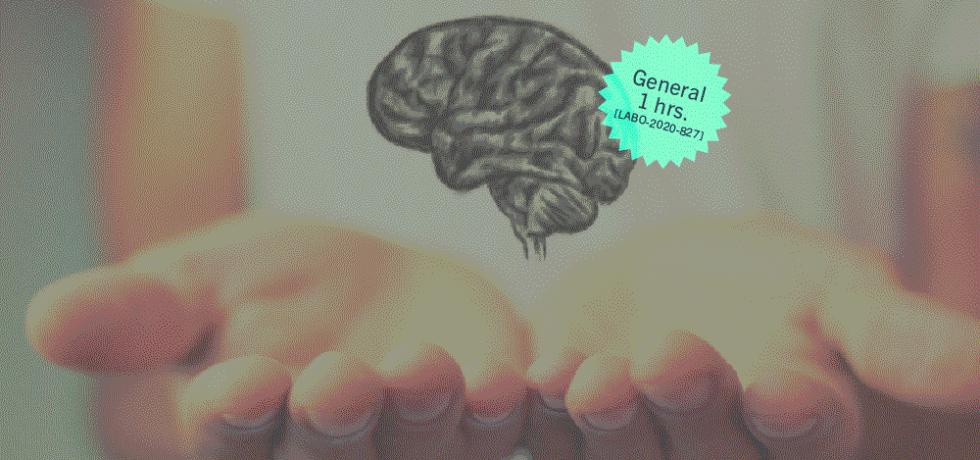 Salud mental y acomodo razonable bajo Ley ADA: Taller laboral