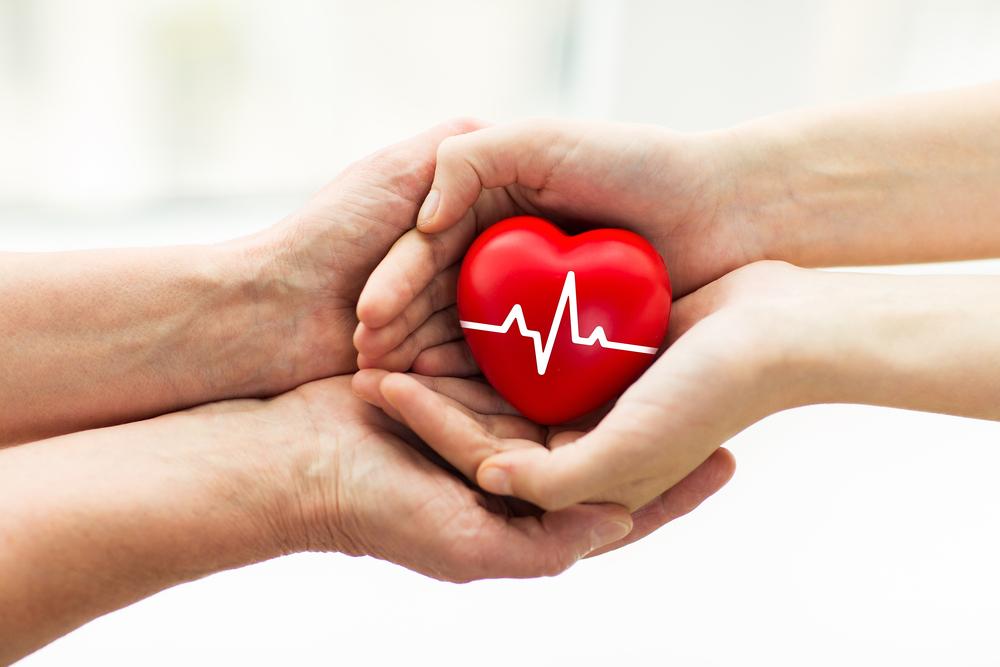 Bioética en donación y trasplante de órganos vitales. Una visión desde la epidemiología social   Microjuris Argentina al Día
