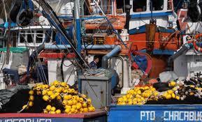 Ley de pesca